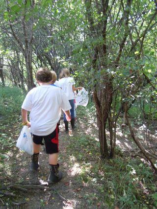 Nature Walk I